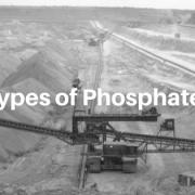 types of phosphates, blue pro phosphate, natural pool products, phosphate remover, pool phosphates, orthophosphates, inorganic phosphates
