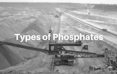 types of phosphates, blue pro phosphate, natural pool products, phosphate remover, pool phosphates, orthophosphates, inorganic phosphates
