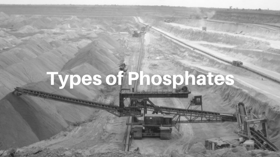 Inorganic Phosphate Organic vs. Ino...