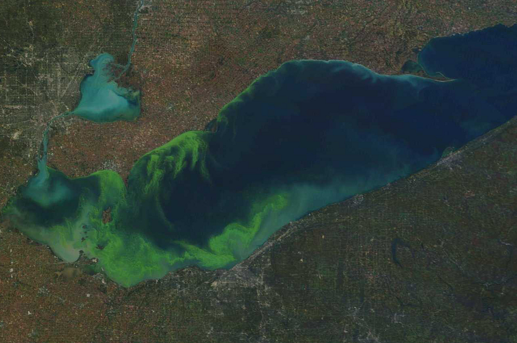 lake erie algae bloom, eutrophication, phosphate, orthophosphates, phosphate remover, algae prevention, types of phosphates